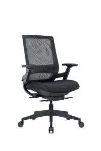 TENMC Mesh Ergonomic Chair